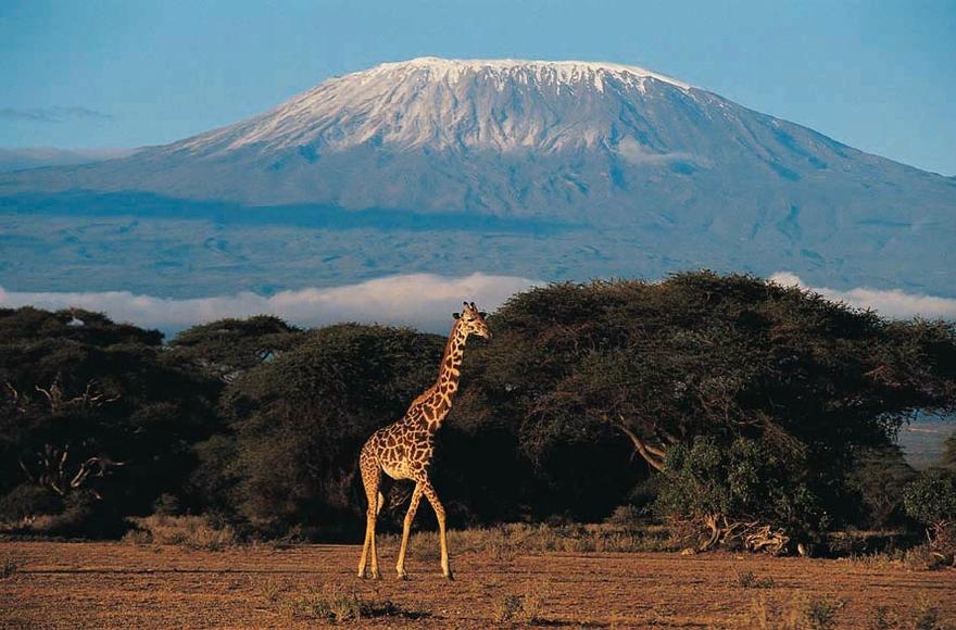 Le Kilimandjaro en Tanzanie