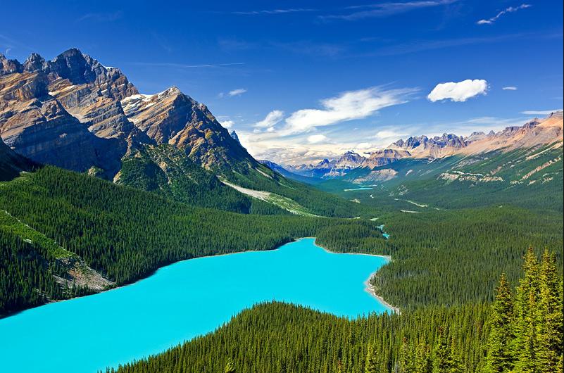 Le lac Peyto au Canada