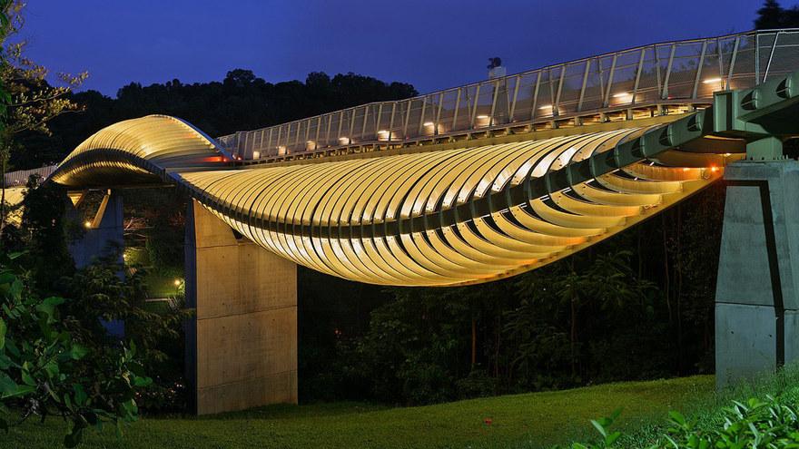 Le pont Henderson Waves - Singapour