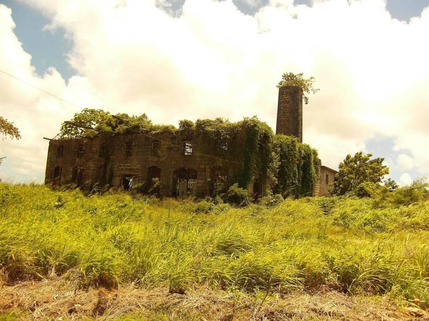 Une distillerie abandonnée à Barbados