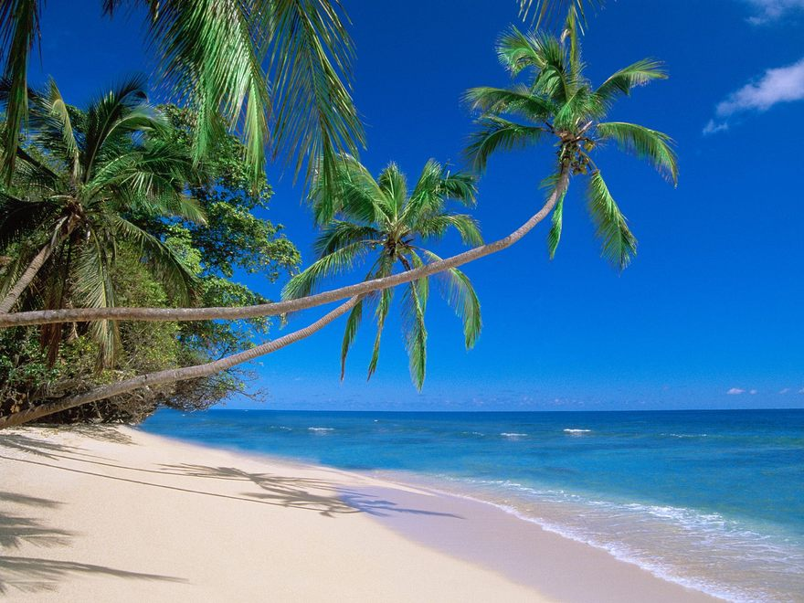 Plage des îles Fiji