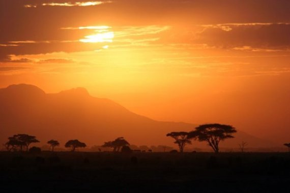 Plaine du Serengeti, Tanzanie