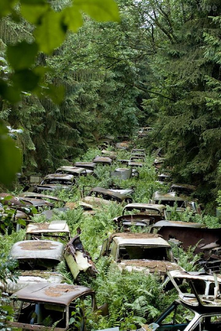 Cimetière de voitures à Chatillon en Belgique.