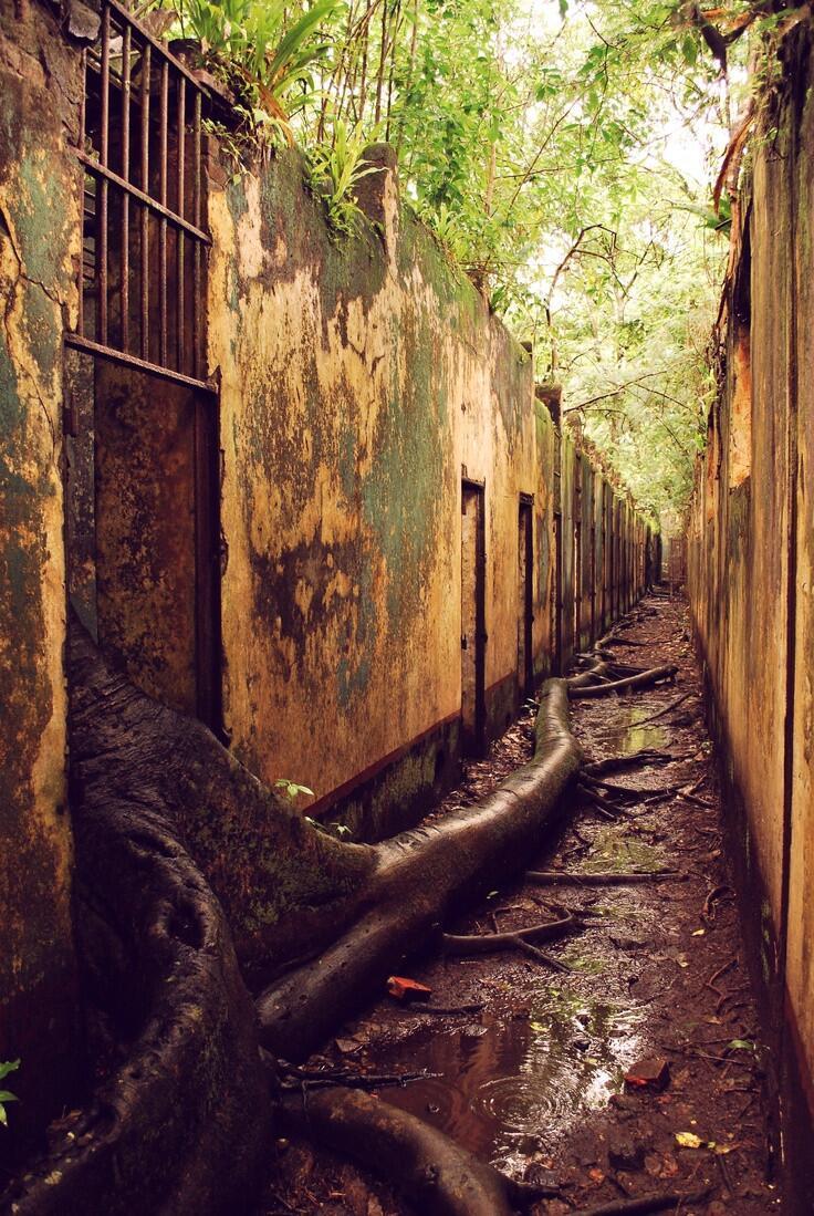 Prison abandonnée sur l'île Saint-Joseph en Guyane
