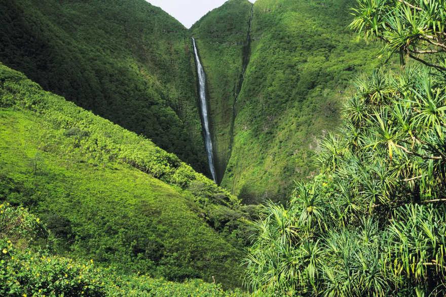 Les chutes Papalaua à Hawaii