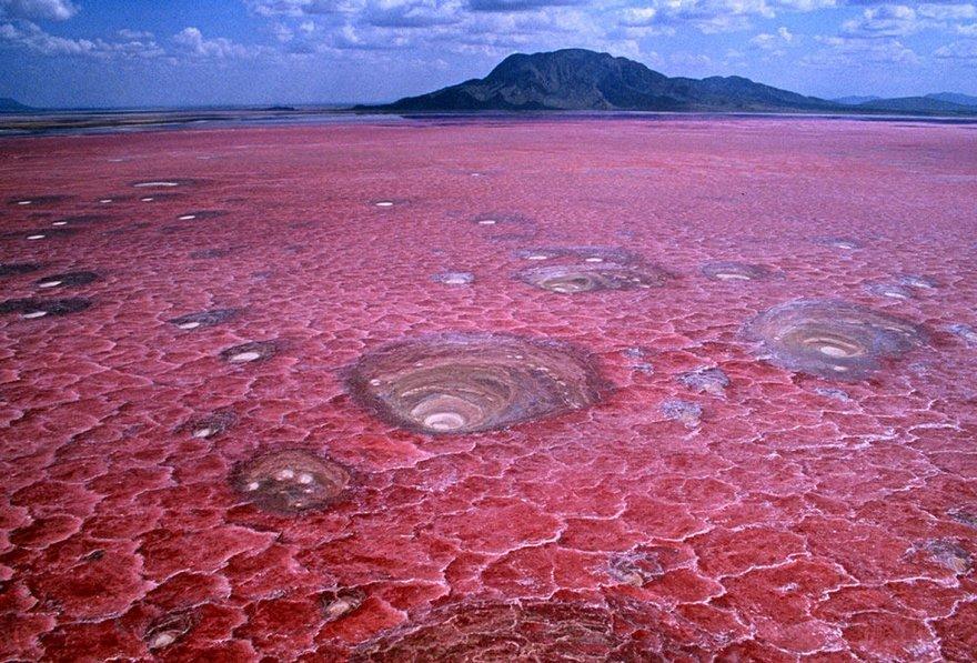Le Lac Natron en Tanzanie